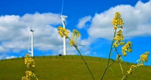 Cenová regulácia v elektroenergetike, novela vyhlášky ÚRSO č. 221/2013
