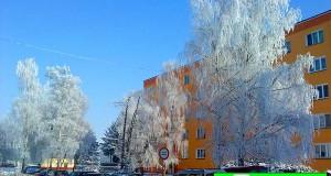 mráz v zime